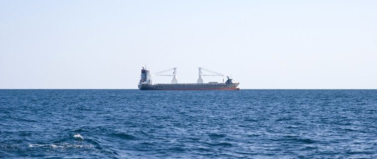 sea sentry